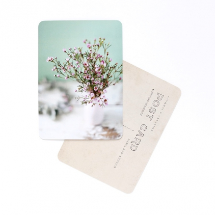 Carte postale Flowers rose and mint