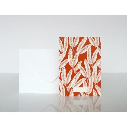 Carte postale plumes