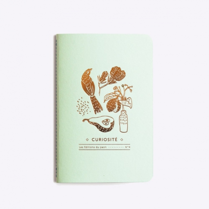 Cahier notebook curiosité n°4 - powder green