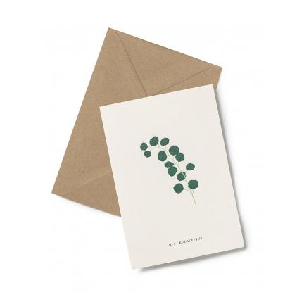 Greeting card - Eucalyptus