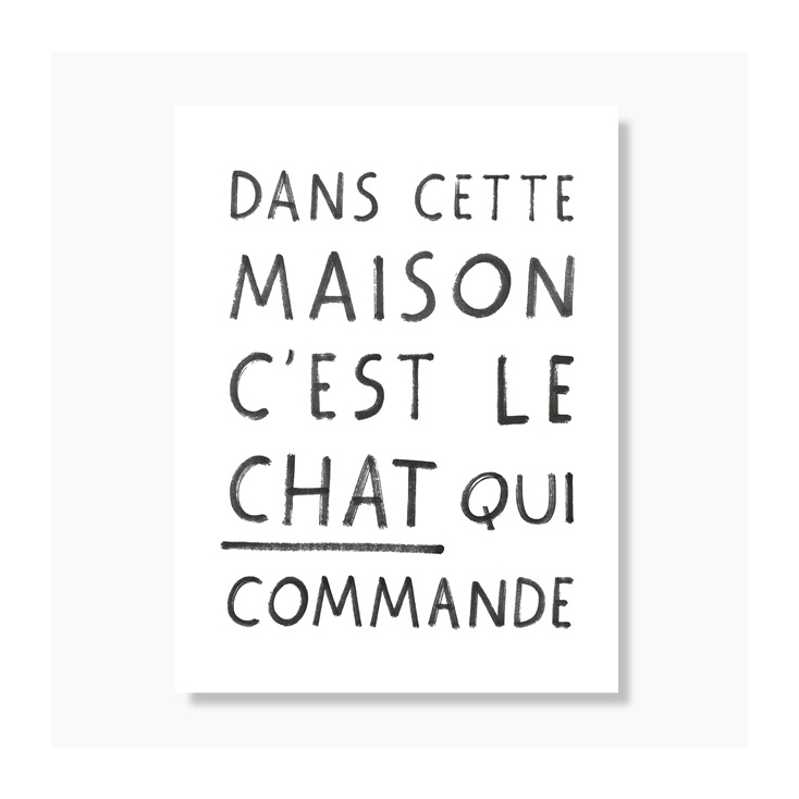 Affiche Cat Manifesto