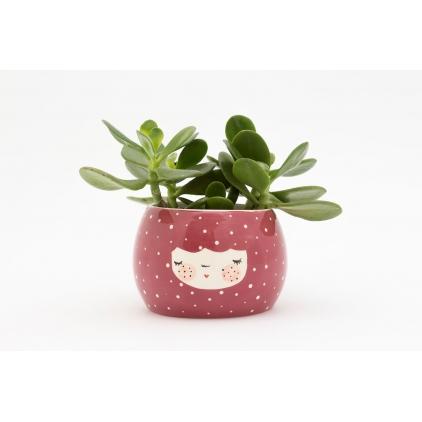 Character planter plummy