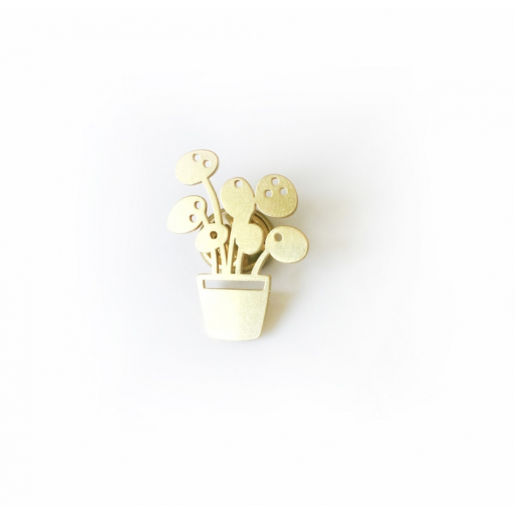 Golden pin pilea