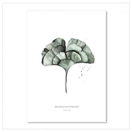 Affiche A4 Ginkgo leaf