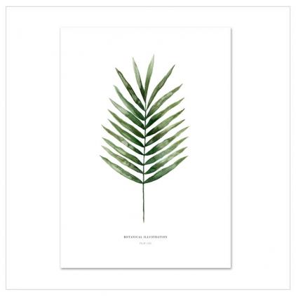 Affiche A4 Palm leaf