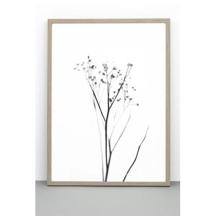 Affiche 50x70 cm - Yarrow