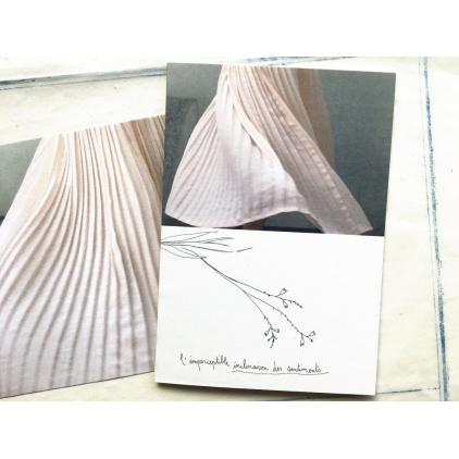 Papillonnage - carte postale - inclinaison