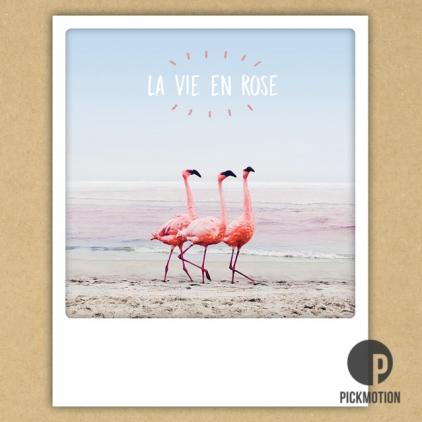Carte postale La vie en rose ZG0370FR