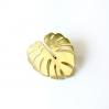 Golden pin monstera